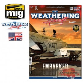 THE WEATHERING AIRCRAFT  11...